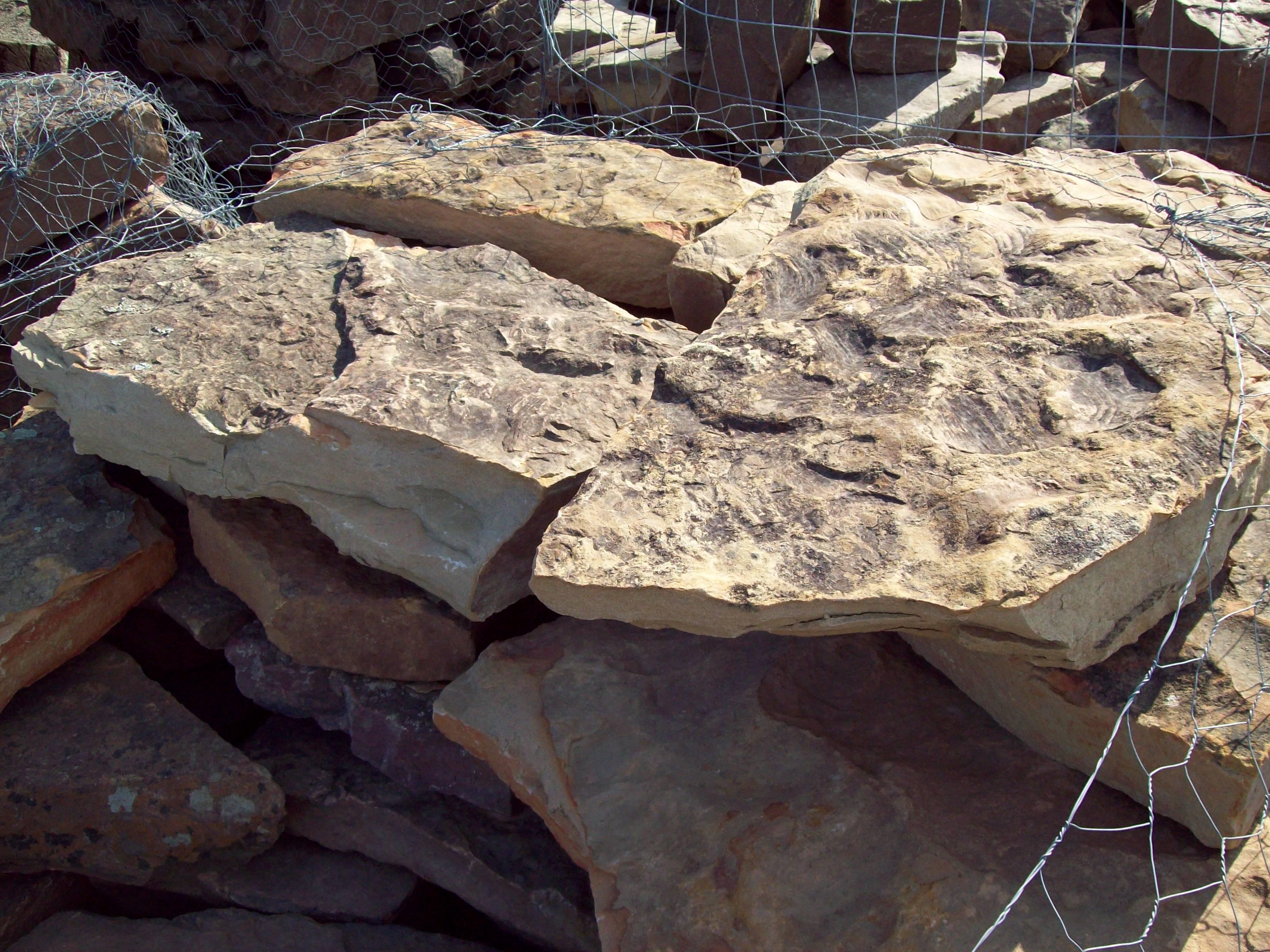 Waterfall Moss Rock